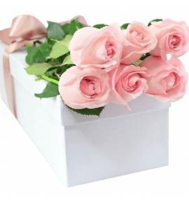 Caja de rosas Rosa Ternura