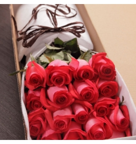 Caja de rosas Conquístame