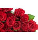 Docena de Rosas Cali