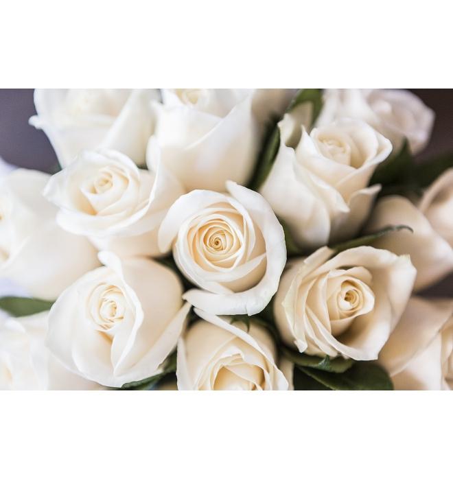 Docena de rosas Blancas Cali - Arte y Flores Cali